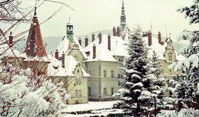 Замок Шенборна взимку