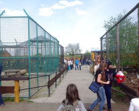 Зоопарк Лімпопо